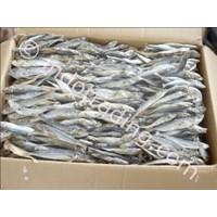Sell Ikan Layang Kering