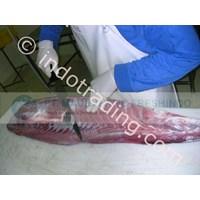 Sell Tuna Loin Segar Untuk Sashimi