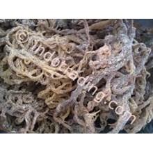 Rumput Laut Cottoni Kering
