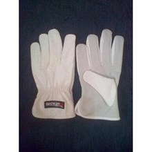 Argon Glove KW1