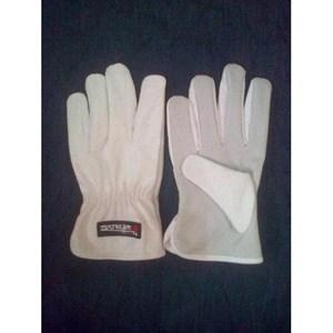 Argon Glove KW1