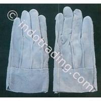 Distributor Split Argon Gloves 3