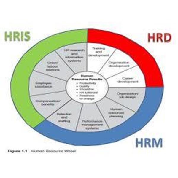 Jasa Konsultasi HRD Dan Sistem Management