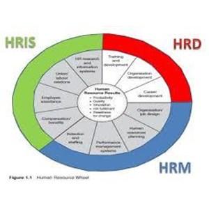 Jasa Konsultasi HRD Dan Sistem Management By Produk Palawija