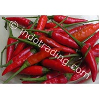 Sell Cabe Impor 2