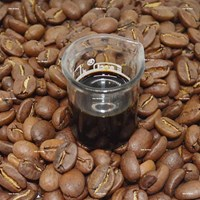 Coffee Arabica Extract