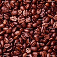 Coffee Robusta Natural Extract