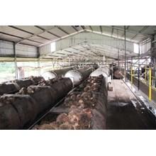Jasa Pembangunan Pabrik Kelapa Sawit