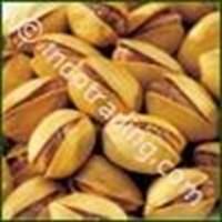 Sell Kacang Pistachio