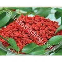 Sell Minuman Goji Berry