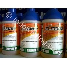 Kleen Up 480 As Herbisida Sistemik