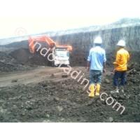 Steam Coal Gcv 6300 - 6100