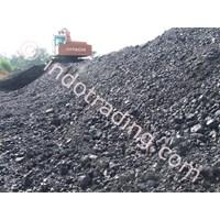 Steam Coal Gcv 5800 - 5600