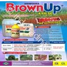 Herbisida Brown Up 490 Sl