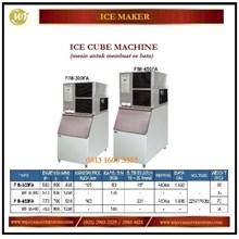 Mesin Pembuat Es Batu / Ice Cube Machine FIM-300FA / BIN IB 300 / FIM-450FA / BIN IB-400 Mesin Makanan dan Minuman Cepat Saji