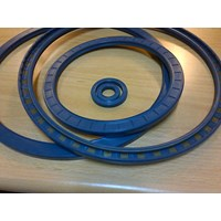Oil Seals Simrit - Cfw 1
