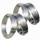 Kawat Stainless Steel 6