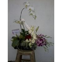 Bunga Bucket Meja 1