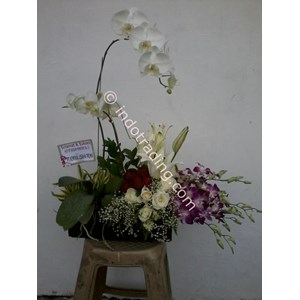 Bunga Bucket Meja