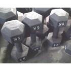 Fitness  Dan Binaraga 3