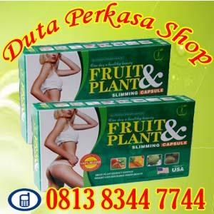 Kapsul Pelangsing Badan Alami Aman Tanpa Efek Samping Obat Penurun Berat Badan Herbal Alami Pelangsing Asli Fruit Plant Slimming Capsul