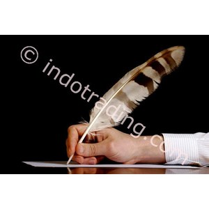 Copy Writer By PT  Indo Training