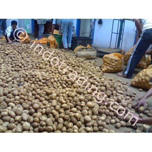 Export Potato Granola Indonesia