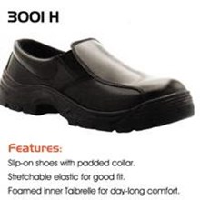 Sepatu cheetah 3001