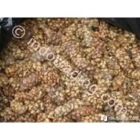 Buy Luwak Coffe West Lampung 4