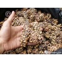 Luwak Coffe Cheap 5