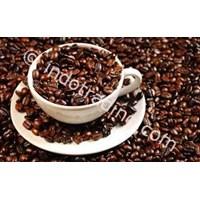 Distributor Luwak Coffe 3