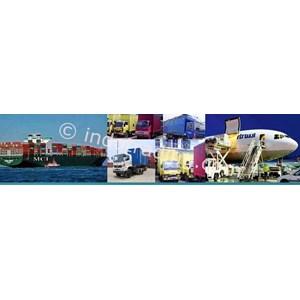 Customs Clearance By Adona Logistics