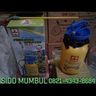 Hand Pressure Sprayer Semprotan Plastik 3