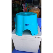 Plastic Low Stool