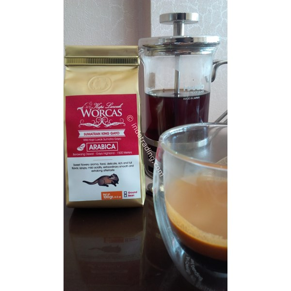 Kopi Luwak Liar Gayo - Natural - Medium Roast - 100 Grams