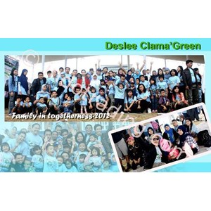Family Gathering Deslee Clama Green By Ivory Event Organizer