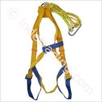 Distributor Safety Belt 3