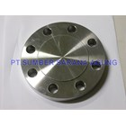 Blind Flange Stainless Steel 1