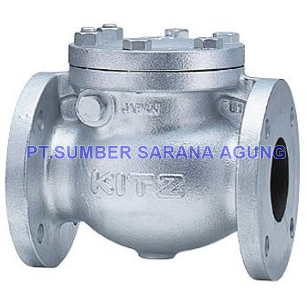 CHECK VALVE CAST IRON ANSI STD