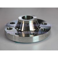 Flange Alloy Weld Neck