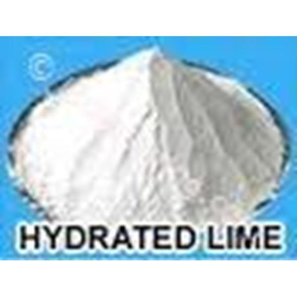 Calcium Hydroxide Ca(OH)2