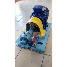 Gear Pump CG-200 - 2