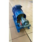 Gear Pump Ropar CG-250 - 2.5