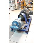 Gear Pump Ropar CG-300 - 3