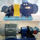 Gear Pump Ropar CGX 5