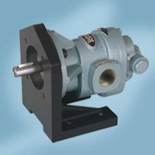 Gear Pump Ropar CGX