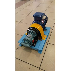 Gear Pump CGX-100 - 1