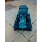 Gear Pump Ropar CGX-125 - 1.25