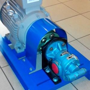 Gear Pump CGX-150 - 1.5