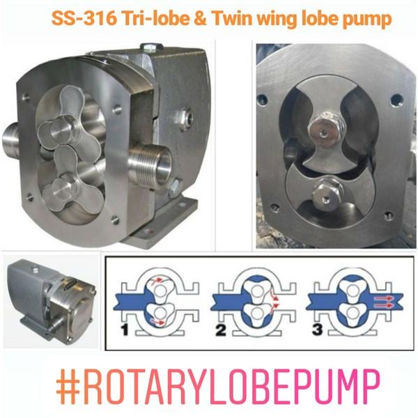 Pompa Rotary Lobe SS-316